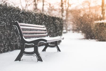 长凳在公园和下雪的天气