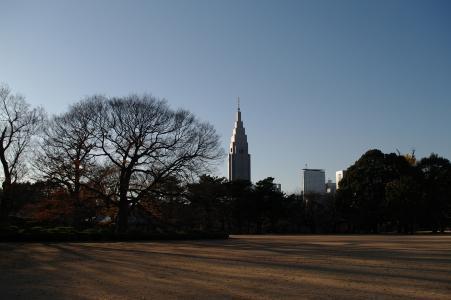 新宿御苑免费股票照片