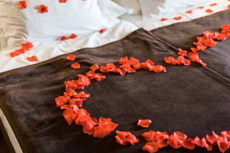 浪漫而可爱的玫瑰花瓣床