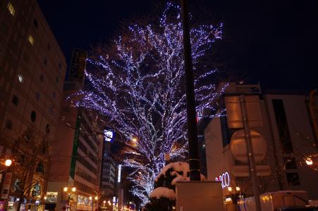 照明(札幌大通)免费图片