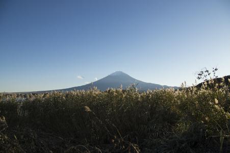从河口湖看到的富士山免费照片