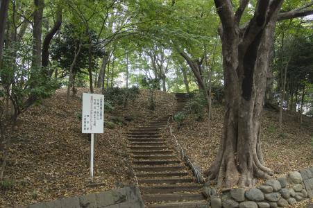 上野启示公园免费图片