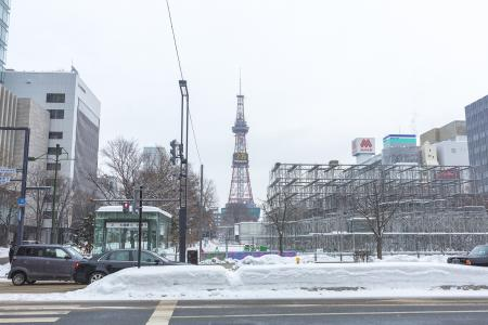 札幌雪节在冬天公园的准备免版税库存照片