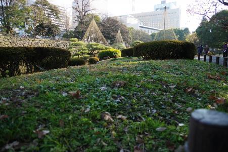 日比谷公园免费图片