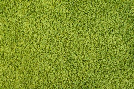 绿色高堆地毯关闭图案背景