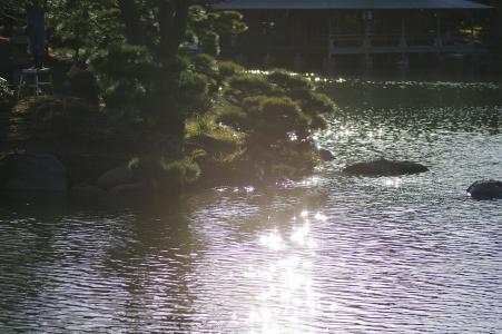 反射水表面免费照片