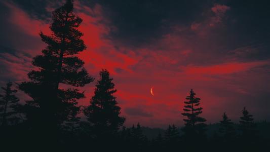 实拍血月高清美景